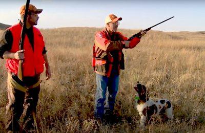 Upland Game Hunting – Dave Miller (0:24)